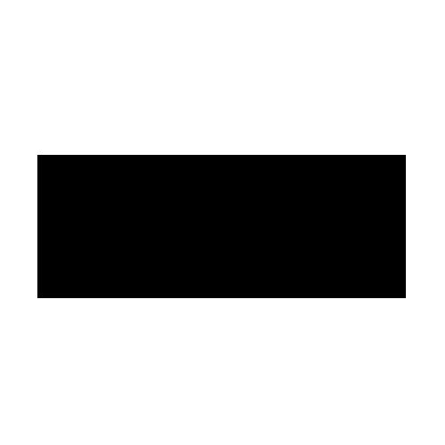 logo Elysées Biarritz